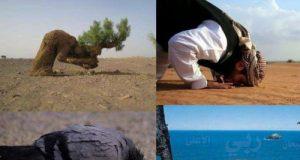 Раб Аллаха
