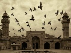 Ваххабиты – кто они?